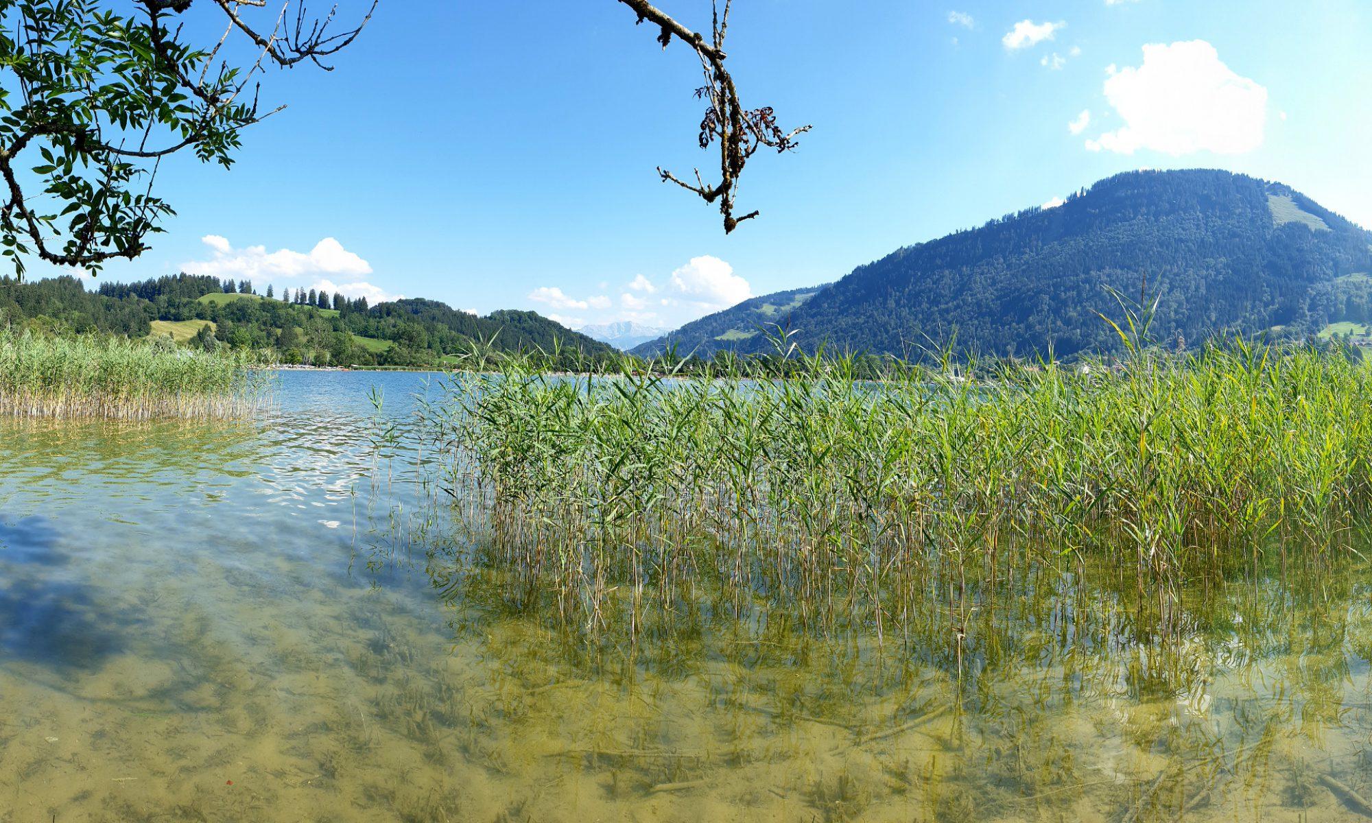 FeWo Alpenblick